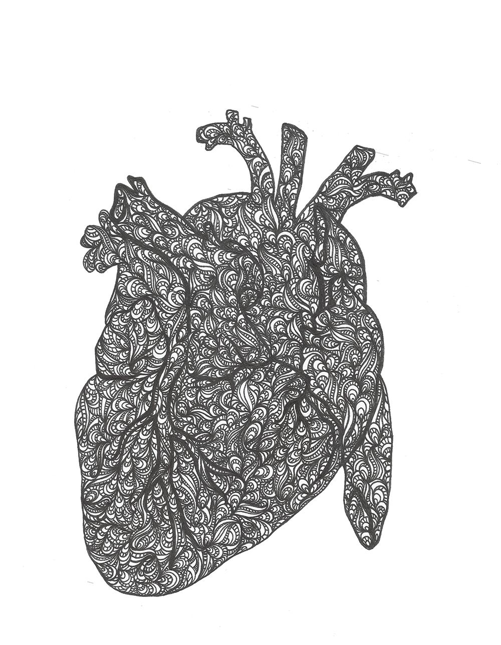 mnc_anatomyart01