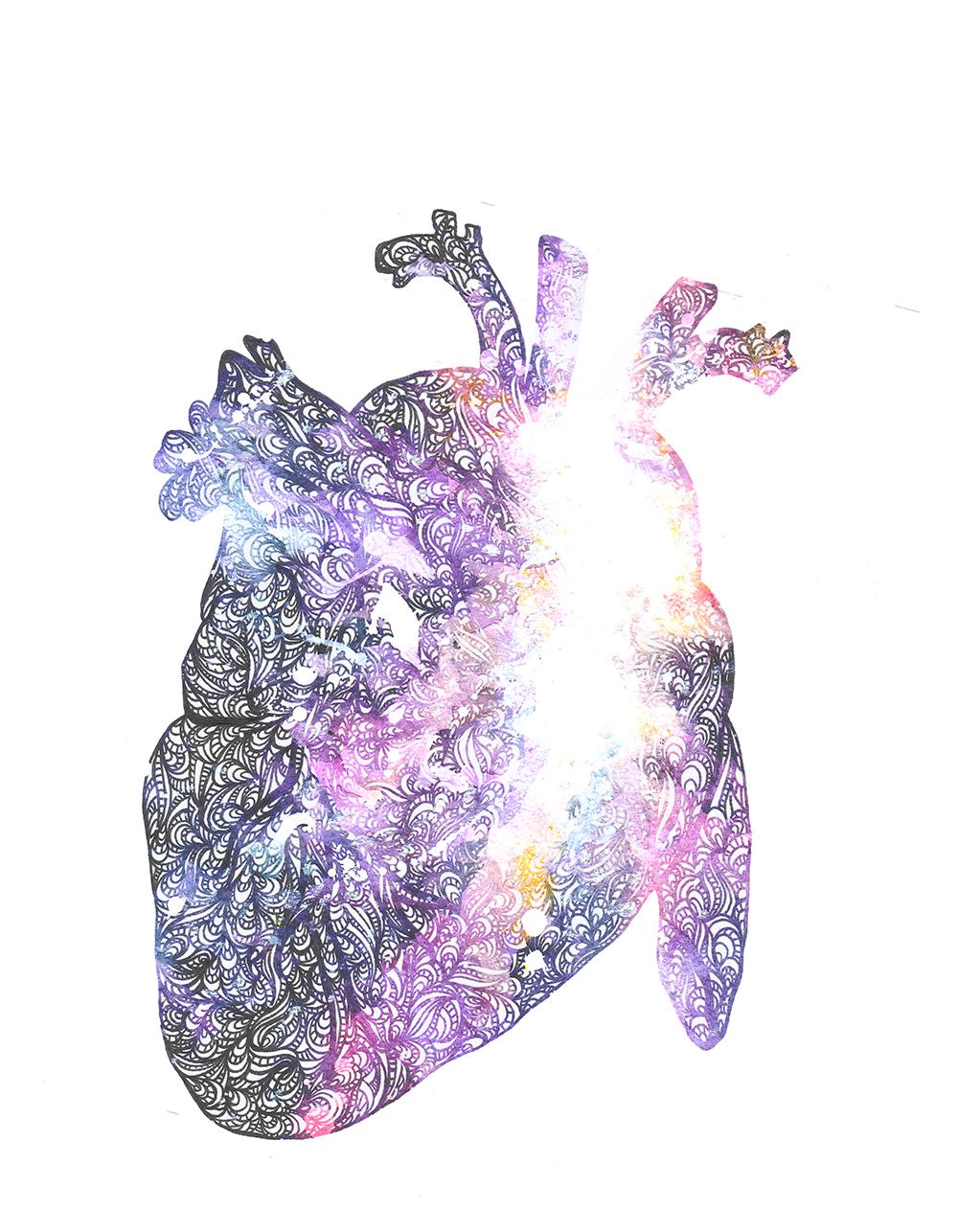 mnc_anatomyart02