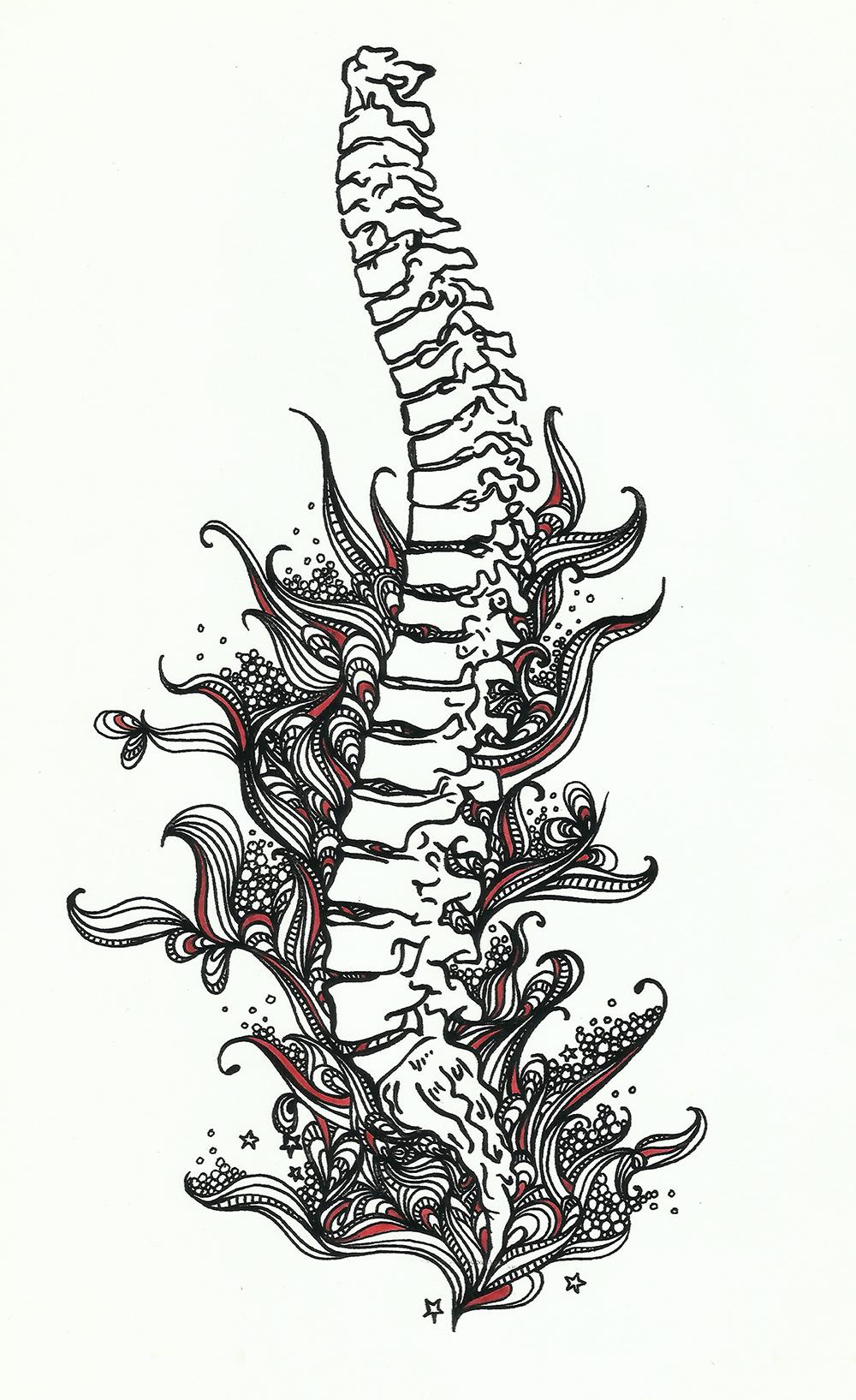mnc_anatomyart04